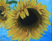 Sunflower--Sold