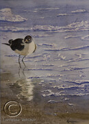 Shore Bird - Sold