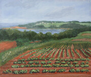 Potato Fields - Sold